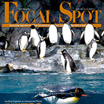 Malinckrodt Institute of Radiology at Washington University - Focal Spot Magazine